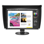 Monitor Eizo ColorEdge CG2420-BK